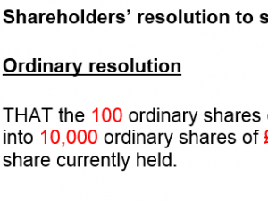 Shareholders' resolution to split shares
