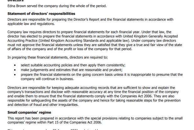 accounts directors report